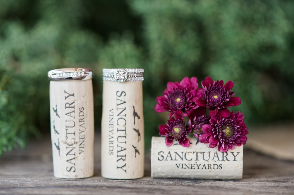 Sanctuary Vineyards Wedding Outer Banks Wedding Photographers